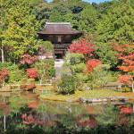 円成寺(奈良市)の紅葉、見頃