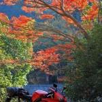 京都・山城エリアを巡るツーリング