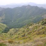 新緑とツツジが彩る白髪岳(兵庫県)