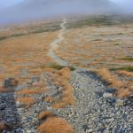 10月、双六岳山行報告2(2日目双六岳登頂編)