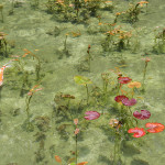 岐阜県「モネの池」ツーリング1