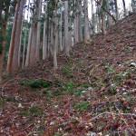 蓬莱山(滋賀県)、金比羅神社経由ルートでのちょっとした道迷い