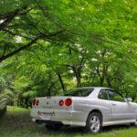 樒ヶ原から美山大原神社ドライブ